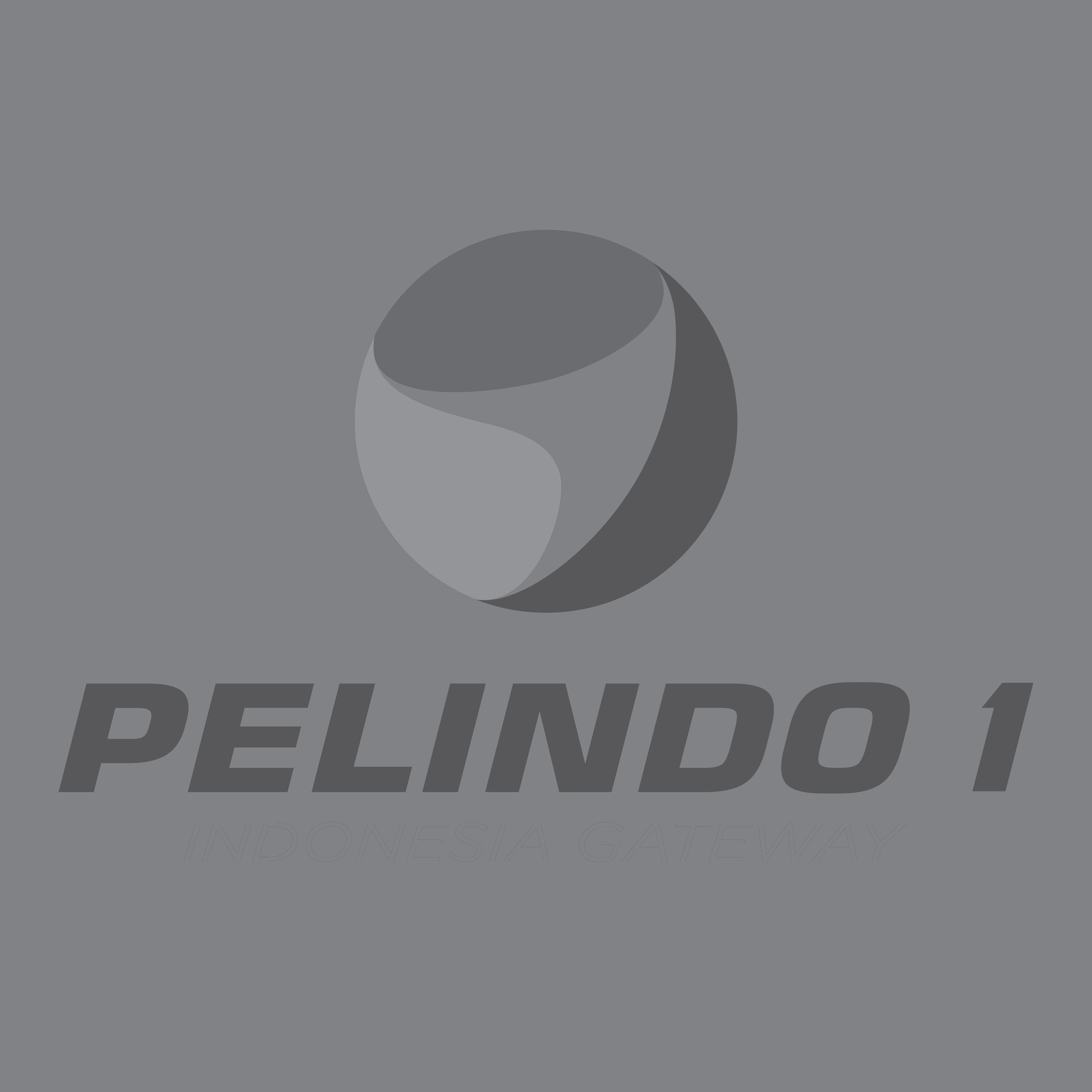 Plm 05
